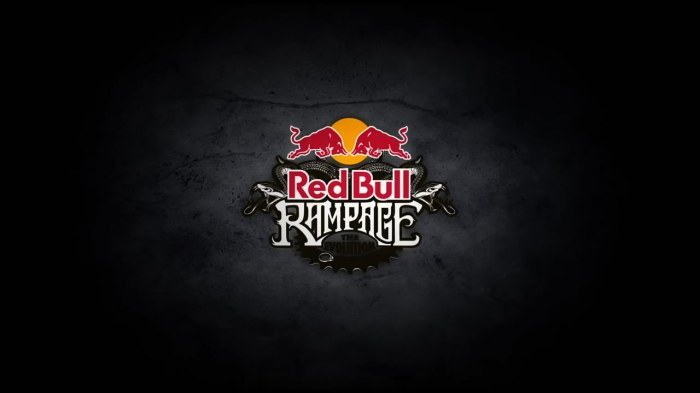 Ultimate Downhill MTB Competition - Red Bull Rampage 2012 TEASER.mp4_snapshot_01.40_[2012.08.02_20.55.43]