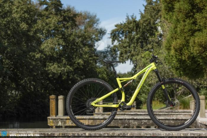Specialized-Bikes-258-780x520